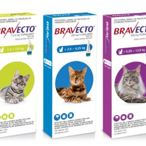 Bravecto Topical Solution for Cats MAIN