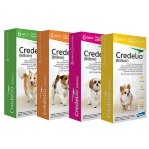 Credelio flea and tick chewable