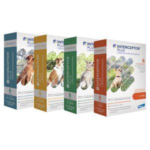 interceptor plus dog medicine miami fl