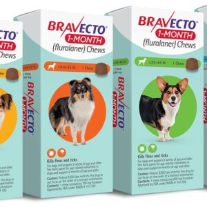 Bravecto 1-Month Chews for Dogs MAIN