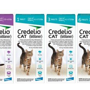 credelio-lotilaner-for-cats